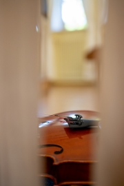 IMG_6082-2021-06-10T13_20_43.186